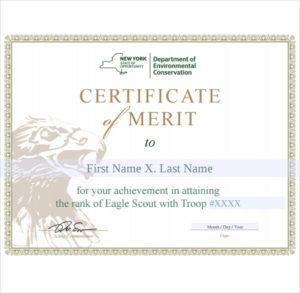10+ Merit Certificate Templates | Free Printable Word & Pdf in Merit Certificate Templates Free 10 Award Ideas