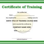 11 Free Sample Training Certificate Templates – Printable For Quality Template For Training Certificate