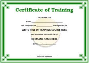 11 Free Sample Training Certificate Templates – Printable with Training Course Certificate Templates