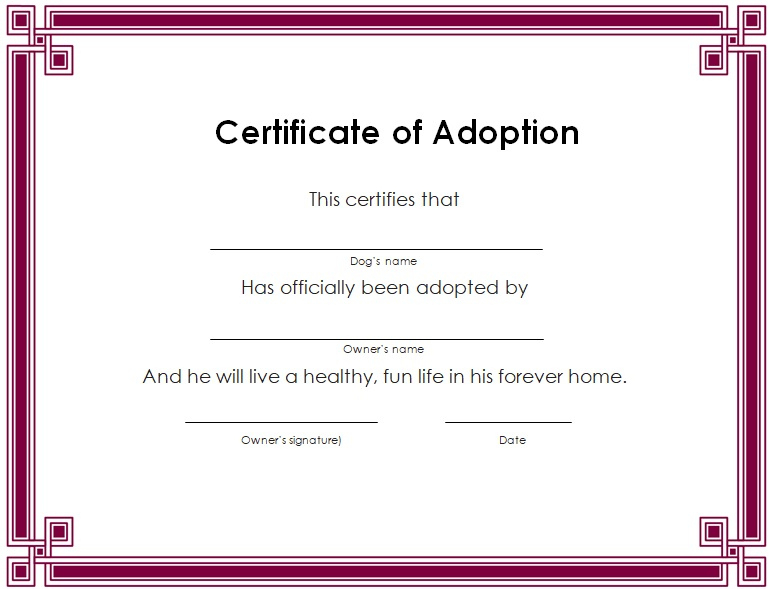 15+ Free Printable Real & Fake Adoption Certificate Templates inside Quality Blank Adoption Certificate Template