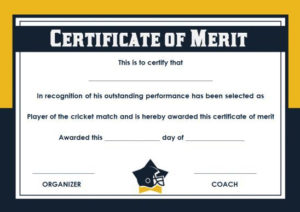 20+ Free Sports Certificate Templates: Unique, Modern And regarding Best Silent Auction Certificate Template 10 Designs 2019