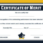 20+ Free Sports Certificate Templates: Unique, Modern And Within Fresh Player Of The Day Certificate Template Free