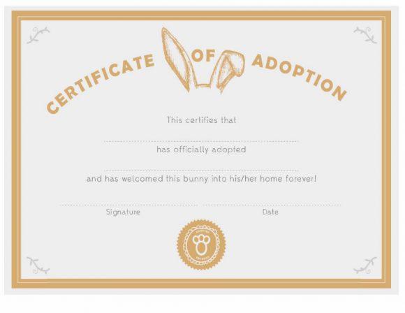 40+ Real & Fake Adoption Certificate Templates - Printable for Fresh Rabbit Adoption Certificate Template 6 Ideas Free