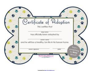 40+ Real & Fake Adoption Certificate Templates – Printable for Pet Adoption Certificate Template Free 23 Designs