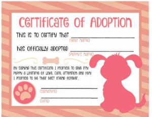 40+ Real & Fake Adoption Certificate Templates – Printable for Quality Dog Adoption Certificate Free Printable 7 Ideas