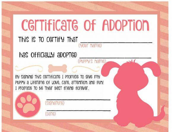 40+ Real & Fake Adoption Certificate Templates - Printable in Dog Adoption Certificate Editable Templates