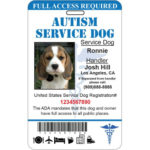 Autism Service Dog Id Card Ada Tag Badge Professional Custom Throughout Best Service Dog Certificate Template Free 7 Designs