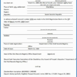 Birth Certificate Translation Template Uscis (12 Pertaining To Birth Certificate Translation Template Uscis