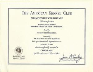 Certificate Archive | Reidsan regarding Certificate Of Championship