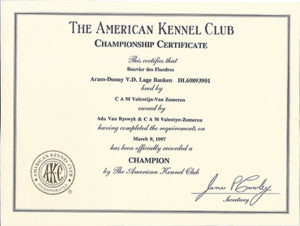 Certificate Archive | Reidsan throughout Certificate Of Championship