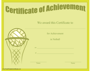Certificate Of Achievement In Netball Printable Certificate in Quality Netball Participation Certificate Templates