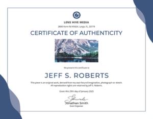Certificate Of Authenticity: Templates, Design Tips, Fake regarding Best Certificate Of Authenticity Templates
