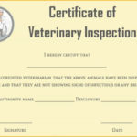 Certificate Of Veterinary Inspections | Certificate For Unique Veterinary Health Certificate Template