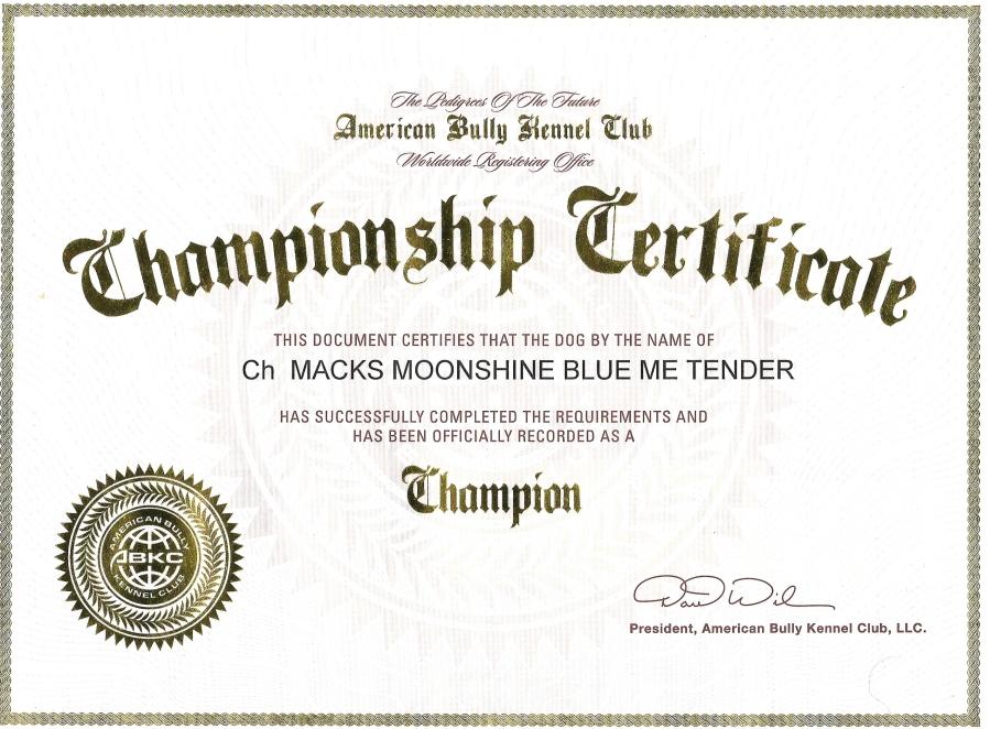 Champion Macks inside Unique Certificate Of Championship