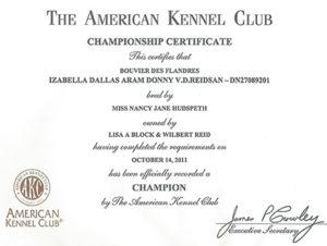 Championship Certificate | Reidsan with Unique Certificate Of Championship