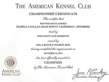 Championship Certificate   Reidsan with Unique Certificate Of Championship