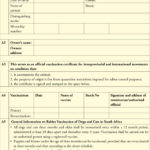 Dentity, Rabies Vaccination And Movement Certificate For Within Fresh Rabies Vaccine Certificate Template