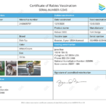 Digital Rabies Vaccination Certificates | Gvl Regarding Fresh Rabies Vaccine Certificate Template
