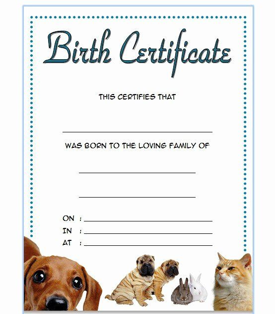 Dog Birth Certificates Templates Awesome Pet Birth with Dog Birth Certificate Template Editable