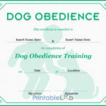 Dog Obedience Certificate Format In Onahau, Snowy Mint And In Best Dog Obedience Certificate Templates