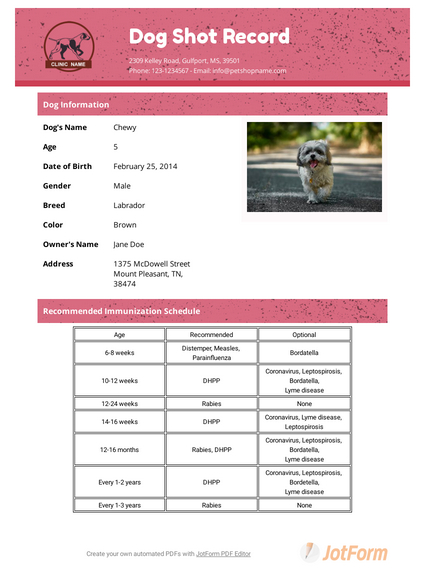 Dog Shot Record Template - Pdf Templates | Jotform with regard to Dog Vaccination Certificate Template