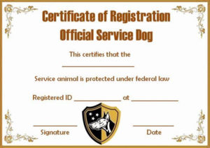 Dog Training Certificate Template Elegant Service Dog Papers with regard to Dog Training Certificate Template Free 10 Best