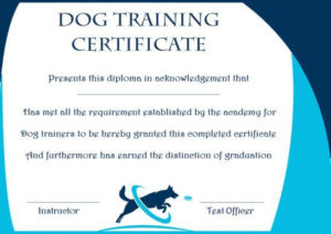 Dog Training Gift Certificate Template | Training within Dog Obedience Certificate Template