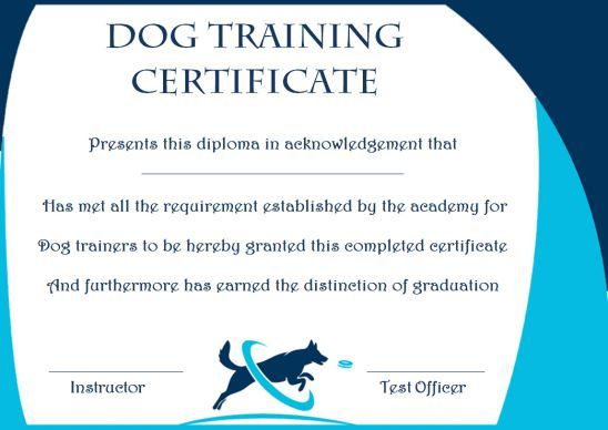 Dog Training Gift Certificate Template | Training within Dog Obedience Certificate Template Free 8 Docs