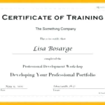 Fall Protection Certification Template (6) | Professional Throughout Fall Protection Certification Template