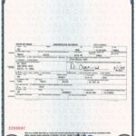 Free 10+ Official Birth Certificates Examples & Templates Pertaining To Official Birth Certificate Template