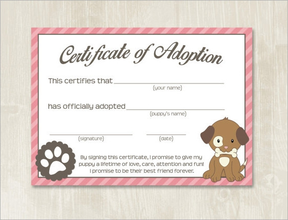 Free 23+ Sample Adoption Certificates In Ai | Indesign | Ms inside Pet Adoption Certificate Template Free 23 Designs