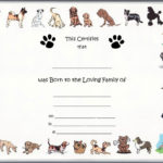 Free Pet Birth Certificate Template Puppy Birth Certificates Regarding Quality Pet Birth Certificate Template