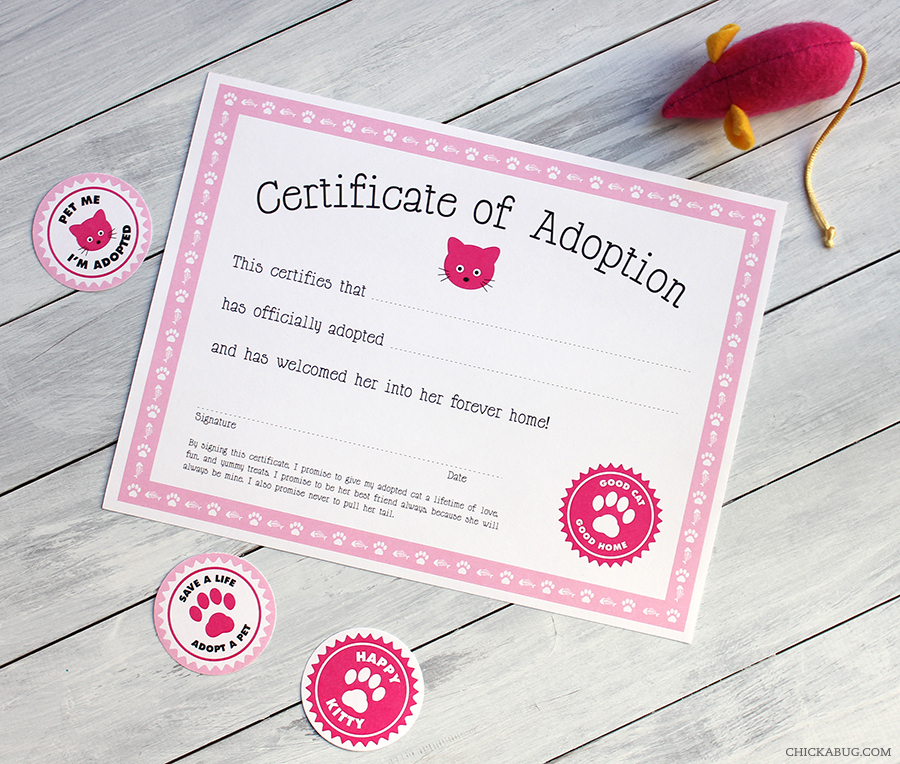 Free Printable Cat Adoption Kits | Chickabug inside Cat Adoption Certificate Templates