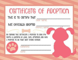Free Printable Stuffed Animal Adoption Certificate Free inside Stuffed Animal Adoption Certificate Editable Templates