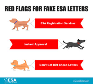 How To Ask A Doctor For An Emotional Support Animal Letter in Best Service Dog Certificate Template Free 7 Designs