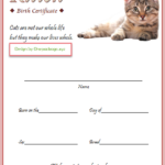 Kitten Birth Certificate Template For 2020 (Version 2) In Pertaining To Quality Cat Birth Certificate Free Printable