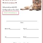 Kitten Birth Certificate Template For 2020 (Version 2) In Within Unique Kitten Birth Certificate Template