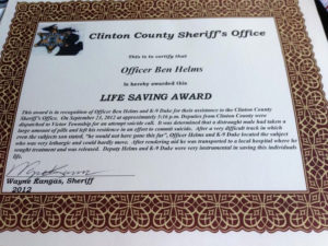Life Saving Award Certificate Template Awesome German intended for Life Saving Award Certificate Template