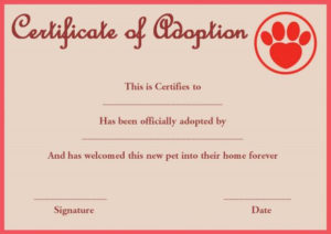 Pet Adoption Certificate Template: 10 Creative And Fun with Best Dog Adoption Certificate Editable Templates