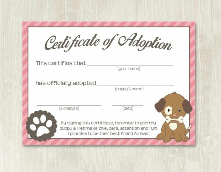 Pet Adoption Certificate Template, Fake Adoption Papers For in New Stuffed Animal Adoption Certificate Template Free