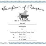 Pet Adoption Printable Certificate Within Quality Cat Birth Certificate Free Printable