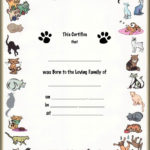 Pet Birth Certificate   All Blank & Printed Pet Keepsake In Unique Kitten Birth Certificate Template