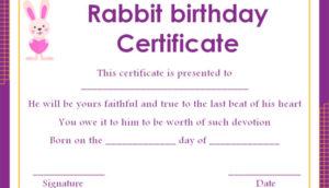 Pet Rabbit Birth Certificate Template – Template Sumo throughout Pet Birth Certificate Template