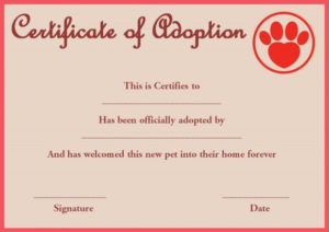 Pet Rock Adoption Certificate Template   Pet Adoption pertaining to Unique Cat Adoption Certificate Templates