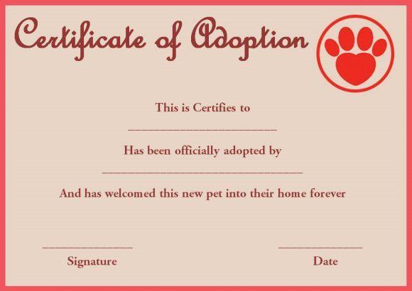 Pet Rock Adoption Certificate Template   Pet Adoption With Regard To New Pet Adoption Certificate Template