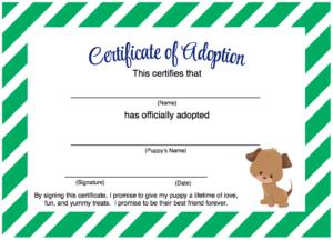 Pinalexandria Gibbs On Puppy Party | Pet Adoption pertaining to Quality Dog Adoption Certificate Free Printable 7 Ideas