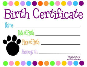 Pinlaurel Berg On The Doc Is In   Pet Adoption for Stuffed Animal Birth Certificate Templates
