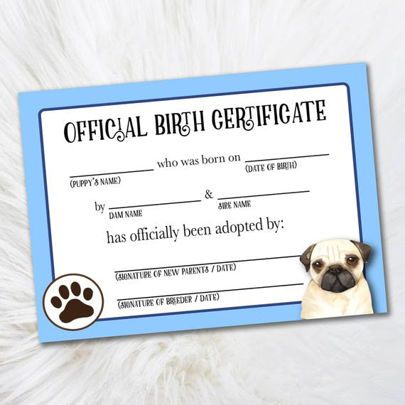 Printable Pug Adoption Certificate - Certificate Of Adoption Printout -  Official Pet Adoption Certificate - Digital Dog Breeders Certificate for Unique Pet Birth Certificate Template 24 Choices