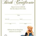Puppy Birth Certificate – Blue Shoe (Instant Download) | Dog Inside Puppy Birth Certificate Template