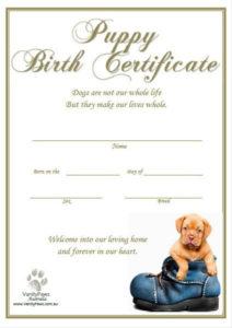 Puppy Birth Certificate - Blue Shoe (Instant Download) | Dog inside Puppy Birth Certificate Template